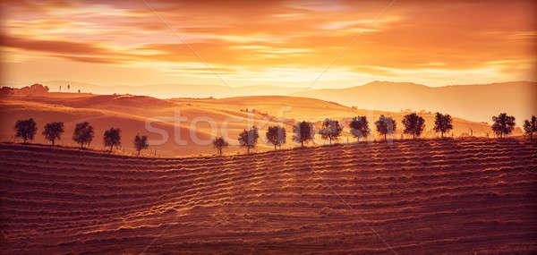 Belle campagne paysage incroyable orange coucher du soleil Photo stock © Anna_Om