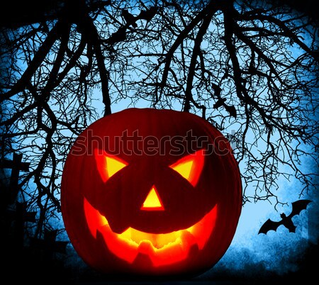 Halloween pumpkin background Stock photo © Anna_Om