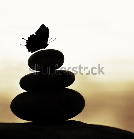 Stock photo: Zen balance stones