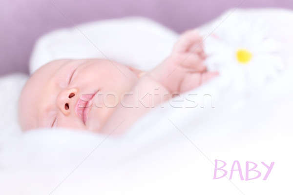 Newborn baby napping Stock photo © Anna_Om