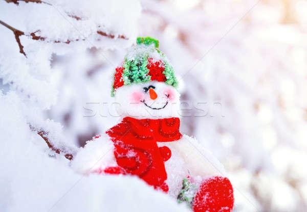 Cute little snowman toy Stock photo © Anna_Om