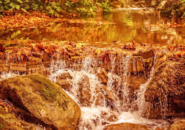 Stock photo: Beautiful waterfall in autumn park