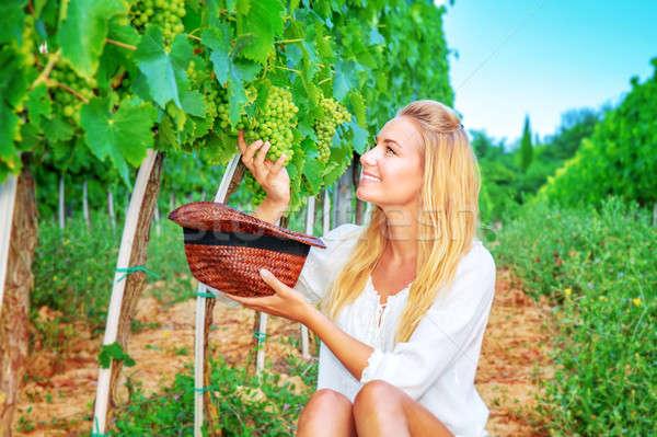 Ragazza felice uve uva campo donna Foto d'archivio © Anna_Om