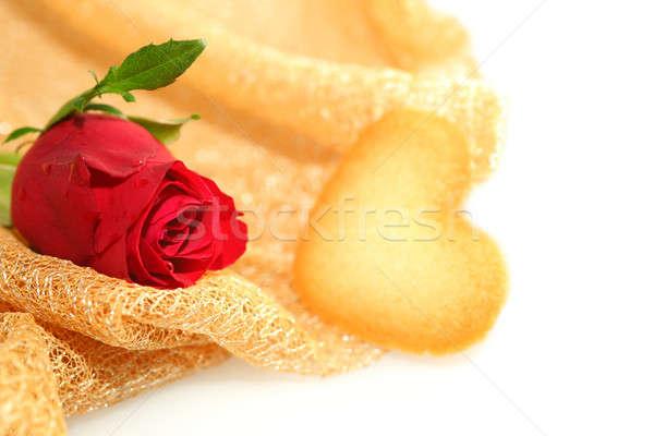 Stok fotoğraf: Kırmızı · gül · kalp · sevmek · gül · doğa · güzellik