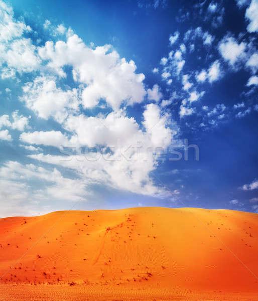 Gyönyörű sivatag tájkép fényes narancs homokos Stock fotó © Anna_Om
