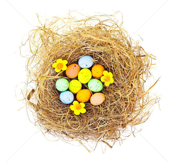 Easter eggs in the nest Stock photo © Anna_Om