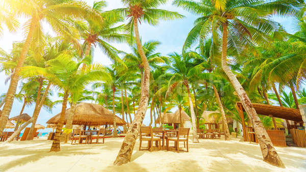 Trópusi tengerpart üdülőhely luxus tengerpart uticél romantikus Stock fotó © Anna_Om
