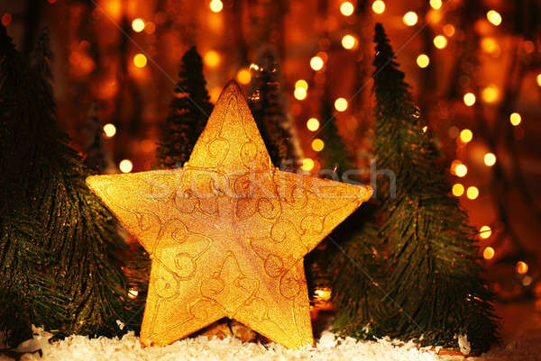 Christmas tree star decoration Stock photo © Anna_Om