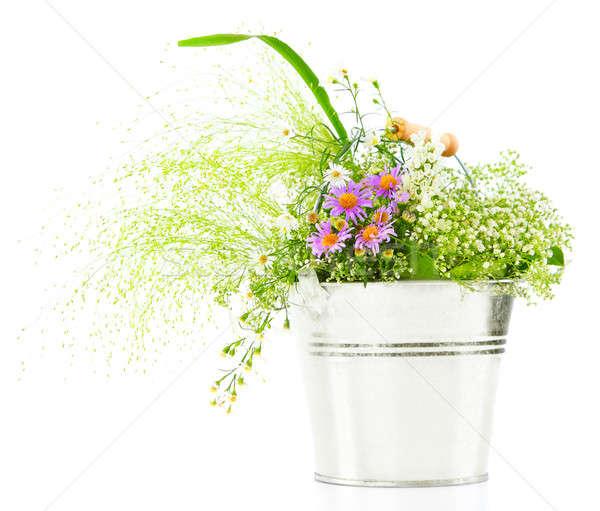 Vödör friss tavasz vad virágok izolált fehér Stock fotó © Anna_Om