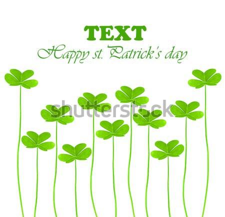 緑 新鮮な クローバー 休日 国境 日 ストックフォト © Anna_Om