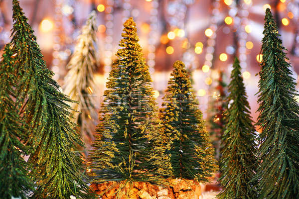 Stock photo: Christmas tree forest