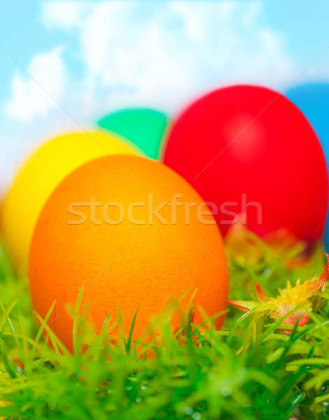 Colorful eggs on green grass Stock photo © Anna_Om