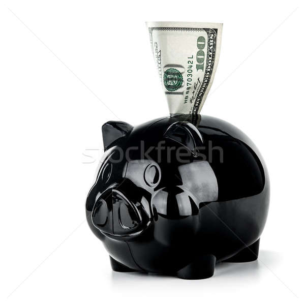 Save money concept Stock photo © Anna_Om