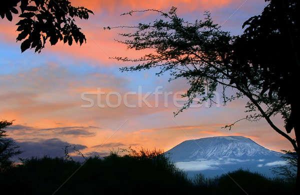 ストックフォト: 日の出 · キリマンジャロ · ケニア · 春 · 風景 · 美
