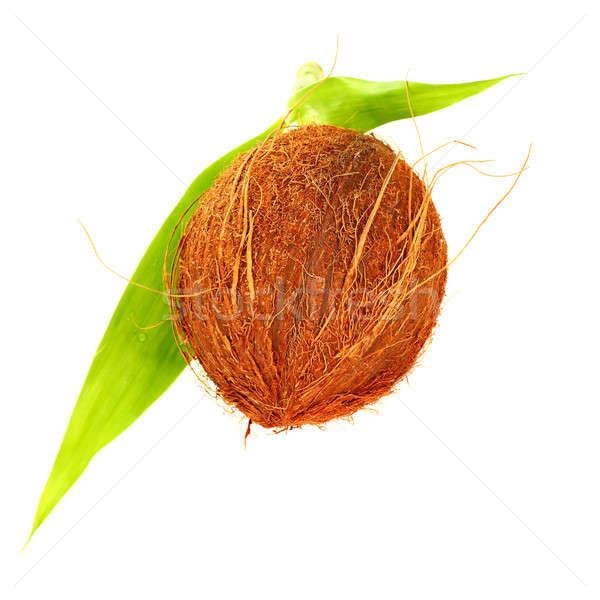 Kokosnoot geïsoleerd witte bruin behaard tropische vruchten Stockfoto © Anna_Om