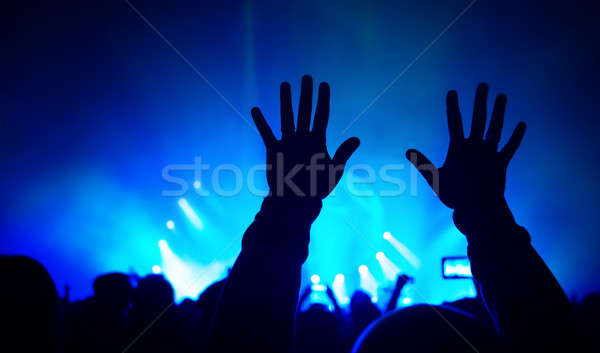 Rock concert Stock photo © Anna_Om