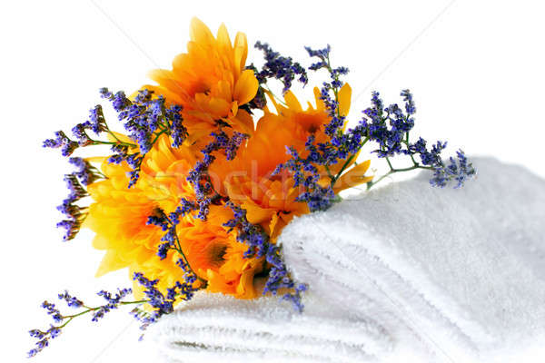 Foto stock: Amarelo · fresco · flores · toalhas · flor · primavera