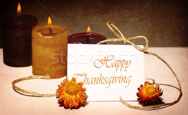 Thanksgiving holiday greeting card Stock photo © Anna_Om