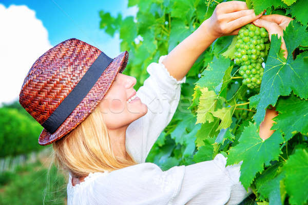 Beautiful young winemaker Stock photo © Anna_Om