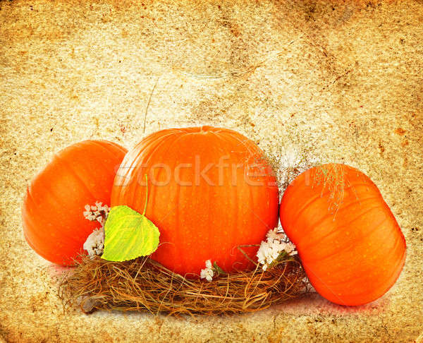 Thanksgiving holiday greeting card stock photo annaom 1235383 stock photo thanksgiving holiday greeting card with orange gourds m4hsunfo