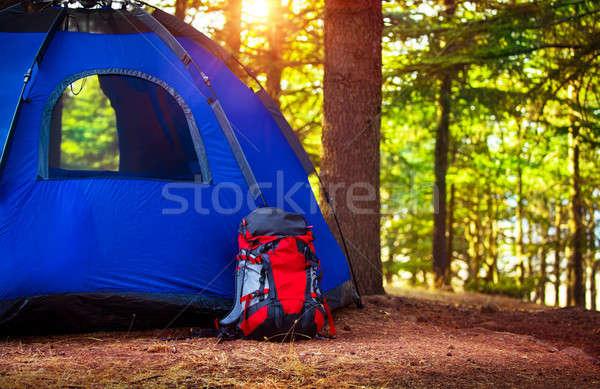 キャンプ 森林 リュックサック 青 テント 林間の空き地 ストックフォト © Anna_Om