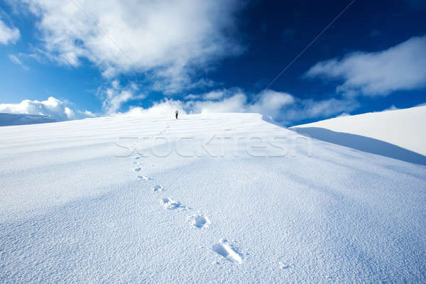 Traveling along snowy mountains Stock photo © Anna_Om