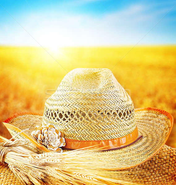 Wheat field and the hat of a farmer  Stock photo © Anna_Om
