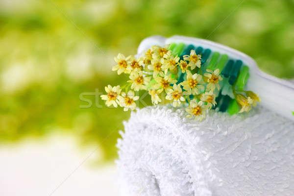 Fogkefe pici virágok egészségügy orvosi természet Stock fotó © Anna_Om