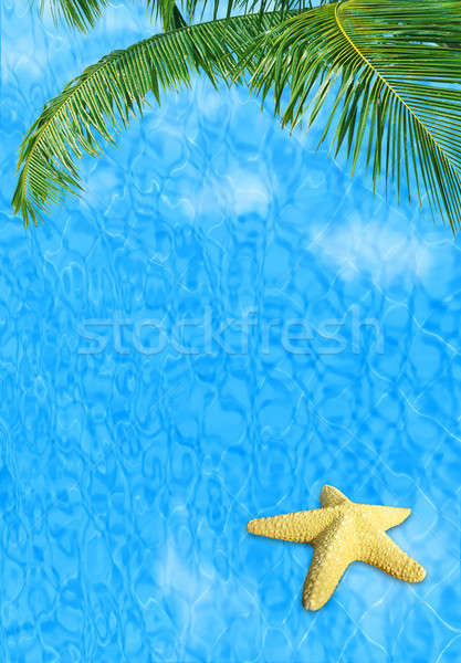 Water background with starfish Stock photo © Anna_Om