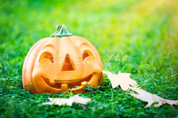 Gelukkig halloween vakantie foto pompoen Stockfoto © Anna_Om
