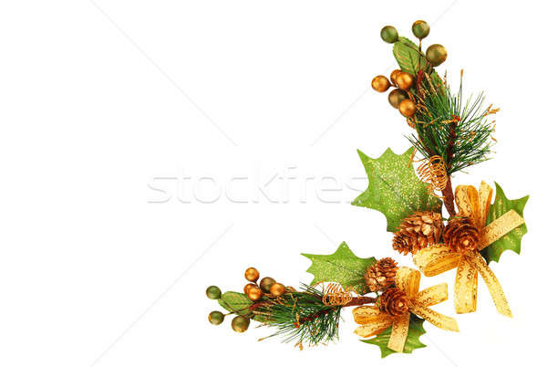 Christmas tree branch ornament Stock photo © Anna_Om