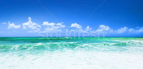 Photo stock: Belle · mer · panoramique · vue · l'eau · propre · ciel · bleu