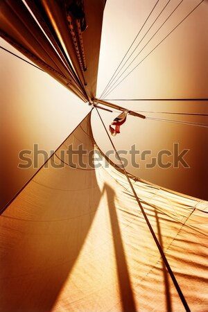 Sail fluttering in the wind Stock photo © Anna_Om