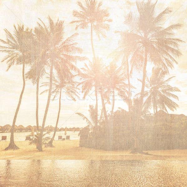 Régi tapéta grunge stílus fotó gyönyörű trópusi tengerpart Stock fotó © Anna_Om