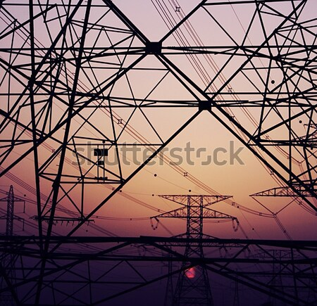 Electricity Pylons over sunset Stock photo © Anna_Om
