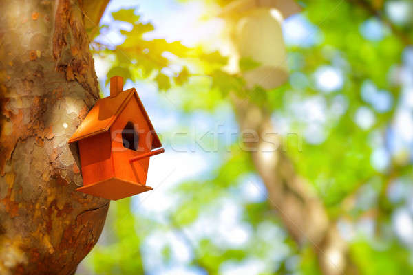 Cute little nesting box Stock photo © Anna_Om