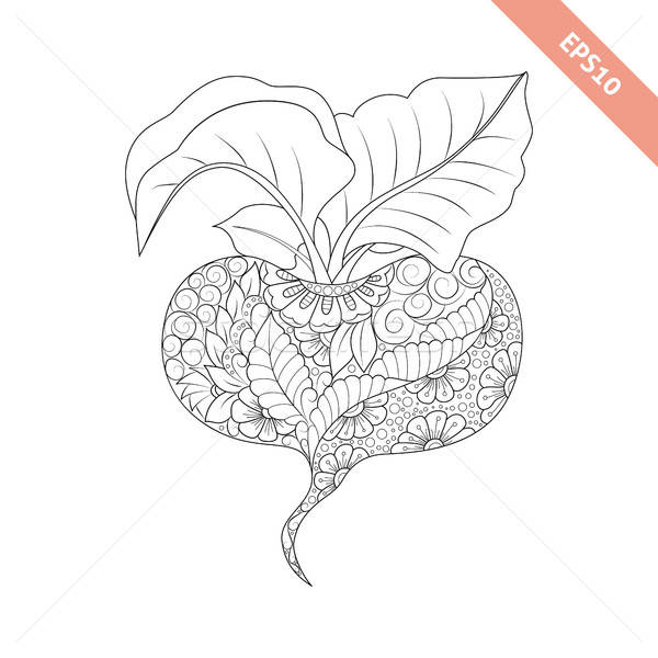 Vector illustration cartoon red beet with floral ornament. Color Stock photo © anna_solyannikov