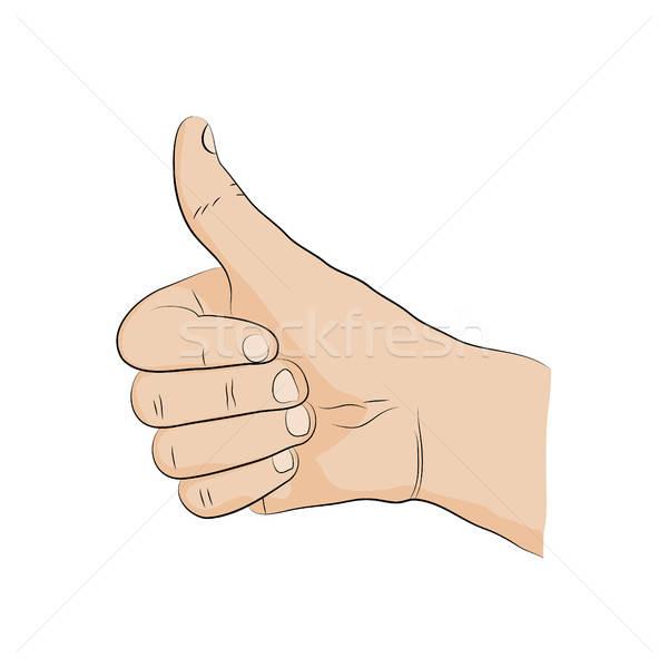 Hand-sign language. ok.sign. Thumb. Stock photo © anna_solyannikov