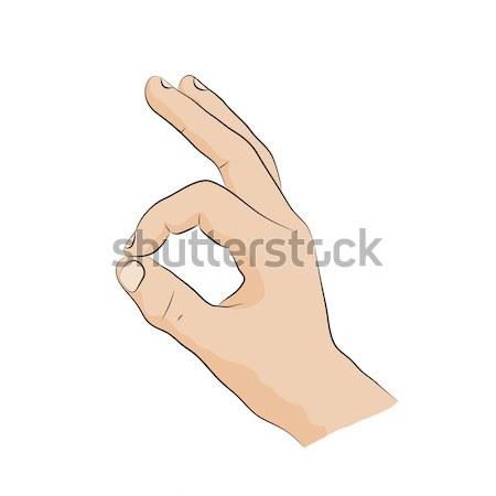 Hand-sign language. Ok.sign Stock photo © anna_solyannikov