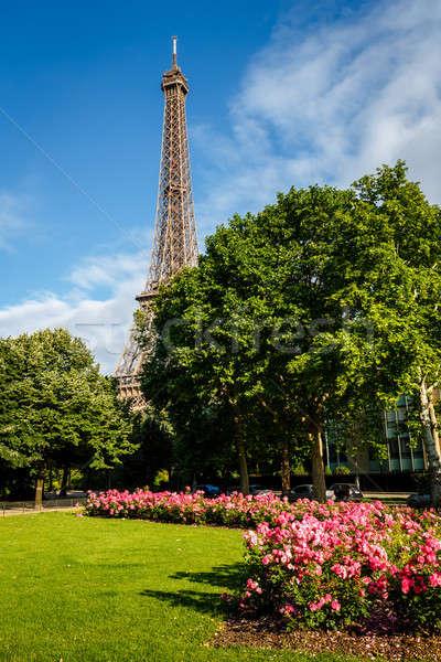 Eiffel Tower and Champs de Mars, Paris, France Stock photo © anshar