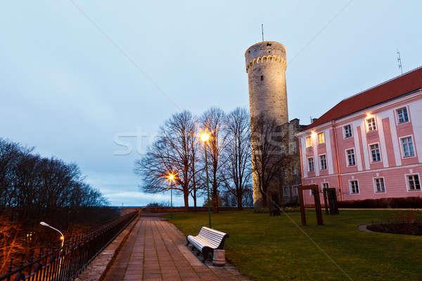 утра долго башни Таллин Эстония дерево Сток-фото © anshar