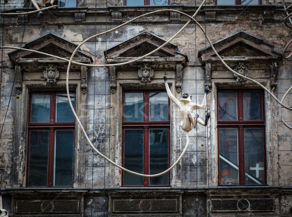 Old House Facade with Monkey Sculpture in Berlin, Germany Stock photo © anshar