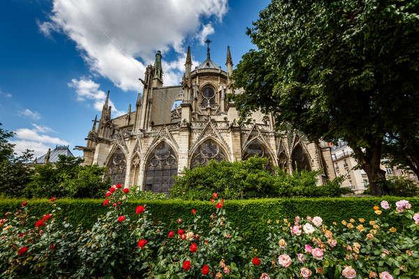 Париж собора красный белый роз Сток-фото © anshar
