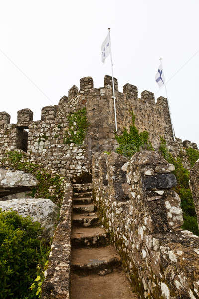 Tower and the Wall in Moorish Castle near Lisbon, Portugal Stock photo © anshar
