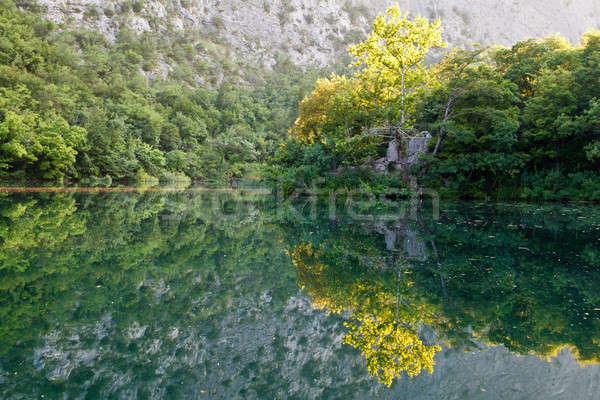 Beautiful Reflection on the River near Split, Croatia Stock photo © anshar