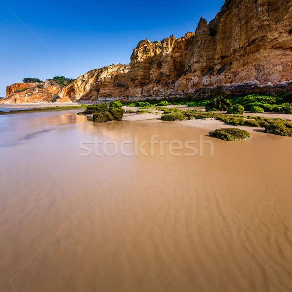 Kayalar plaj sabah doğa yaz Stok fotoğraf © anshar