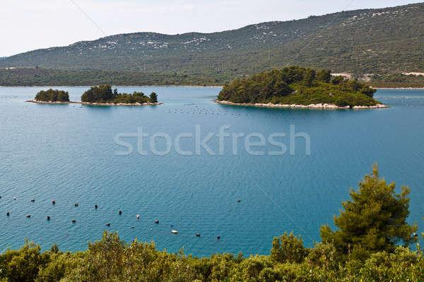 Oyster Farm in Adriatic Sea near Dubrovnik, Croatia Stock photo © anshar