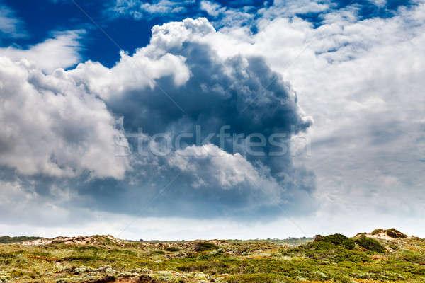 şaşırtıcı bulutlar üzerinde yeşil çayır plaj Stok fotoğraf © anshar