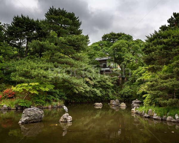 Balıkçıl oturma kaya park kyoto Japonya Stok fotoğraf © anshar