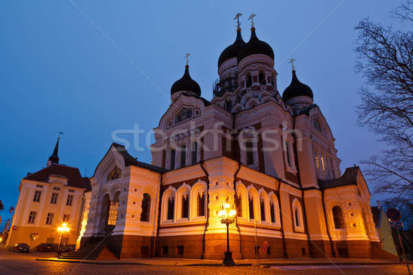 Alexander Nevsky Church in Tallinn at Night, Estonia Stock photo © anshar